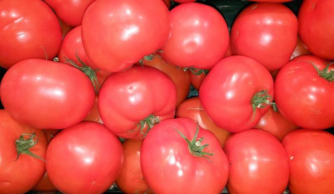 kann man tomaten eigentlich einfrieren so geht es am besten. Black Bedroom Furniture Sets. Home Design Ideas